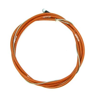 Animal Linear Cable-0